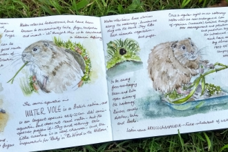 Nature journaling with Jules Wooldford