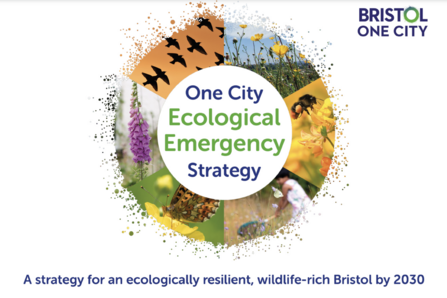 Ecological Emergency Strategy cover